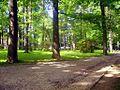 Bielsko-Biała, Cygański Las - fotopolska.eu (113194).jpg