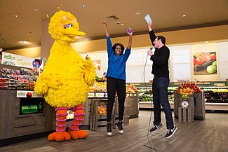 Big Bird - Wikipedia