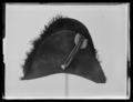 Bikorn från 1820-talet - Livrustkammaren - 79203.tif