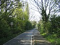 Bird Lane - Traffic Calming measures - geograph.org.uk - 164016.jpg