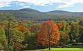 Black Rock Forest view from NE.jpg