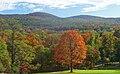 Black Rock Forest view from NE.jpg