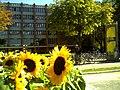 Black September Federal Republic of Germany - Fribourg Constitution Division - Master Habitat Rhine Valley Photography 2013 Cyberwar Utah - Campus University of Freiburg - panoramio.jpg