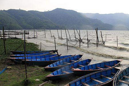 Boats in Phewa Lake.JPG