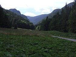 Bobrowiecka Dolina Orawska a1.jpg