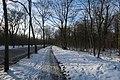 Bois de Boulogne neige 5.jpg