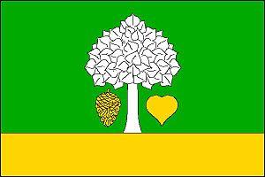 Borová (Náchod District) - Image: Borová (okres Náchod) vlajka