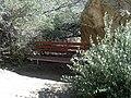 Boyce Thompson Arboretum, Superior, Arizona - panoramio (18).jpg