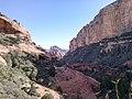 Boynton Canyon Trail, Sedona, Arizona - panoramio (71).jpg