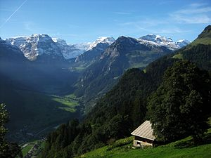 Glarus Alps - Glarus Alps from Braunwald