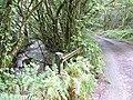 Bridge over Lynher Tributary - geograph.org.uk - 532347.jpg