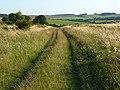 Bridleway, Roden Downs - geograph.org.uk - 526037.jpg