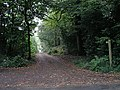 Bridleway 3246 entering Flexham Park - geograph.org.uk - 258197.jpg