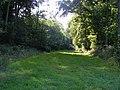 Bridleway To Lower Farm - geograph.org.uk - 1445082.jpg