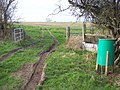 Bridleway above Faulston Hole - geograph.org.uk - 312309.jpg