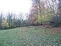 Bridleway in the woods - geograph.org.uk - 1596991.jpg