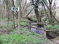 Bridleway to Cherridge and beyond - geograph.org.uk - 751868.jpg