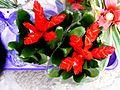 Bromeliads in supermarket (4545104530).jpg