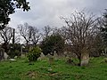 Brompton Cemetery – 20180204 132450 (28387225839).jpg