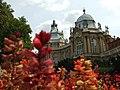 Budapešť, Hunyadi Vár, květiny a hrad.JPG