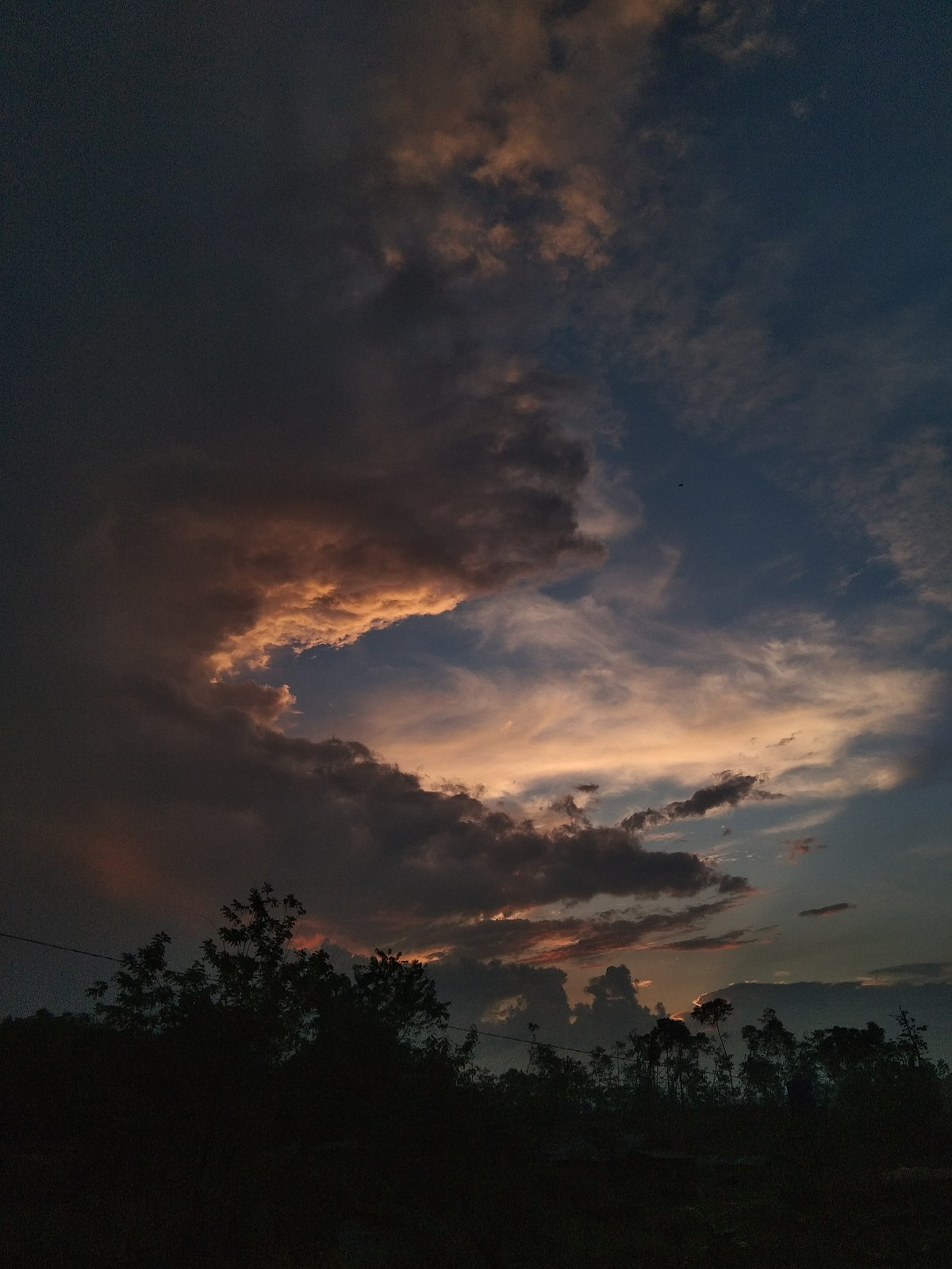 Taman Nasional Bukit Barisan Selatan Wikipedia Bahasa Indonesia Ensiklopedia Bebas