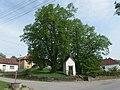 Bzová (Bojkovice), lípy u kapličky.JPG