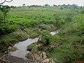 Córrego Grande na Rodovia vicinal Dr. Alberto Ortenblad que liga as cidades de Tabapuã a Novais. - panoramio (1).jpg