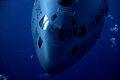 C-17 Globemaster 120712-F-JQ435-076.jpg