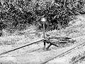 COLLECTIE TROPENMUSEUM De oudste boring naar petroleum in Sumatra TMnr 10006911.jpg