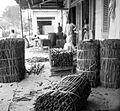 COLLECTIE TROPENMUSEUM Na het ontdoen van de bast van de kaneelboom wordt de Cassia in balen verpakt Fort de Kock Sumatra TMnr 10012319.jpg