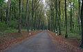 CR117 Angelsberg-Meysembourg 01.jpg