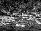 Cañón de Añisclo - Río Bellós 10.jpg