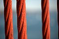 Cables of the Golden Gate bridge in San Francisco 74.jpg