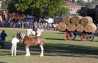 Camden, New South Wales - Image: Camden Show Main Arena 2011