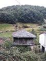 Camino Primitivo en el valle del Río Nisón 04.jpg