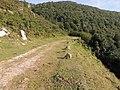 Camino Real de las Hoces de Bárcena. 08.JPG