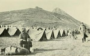 CampamentoSerbio--strickenlandserb00aske