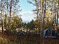 Campsite (183013061).jpeg