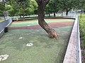 Canil del parque las heras.jpg