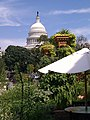 Capitol building as viewed from United States Botanic Garden Washington DC. - panoramio.jpg