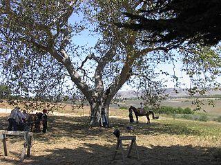 Nipomo, California census-designated place in California, United States