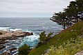 Carmel Highlands May 2011 007.jpg