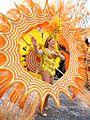 Carnevale a Tempio Pausania (3300920397).jpg