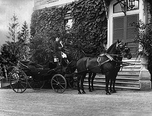 Andrew Allan (shipowner) - Carriage at Andrew Allan's, Montreal 1901