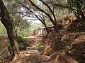 Cascades d'Ouzoud 004.JPG