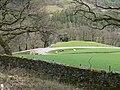 Cattle at Glyn Farm - geograph.org.uk - 1840859.jpg
