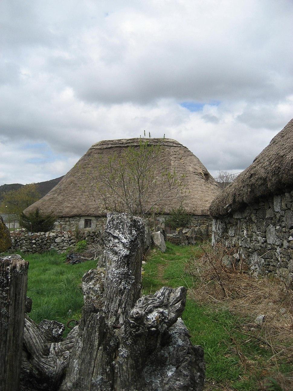 Celtic-galician house