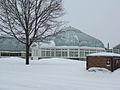 Central Experimental Farm 1.jpg