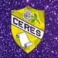 Ceres Shield modified back round.jpg