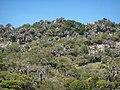 Cerro de la lechiguana desde la ruta 16 - panoramio.jpg